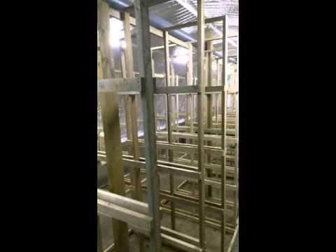 выращивание грибов вешенки на стеллажах