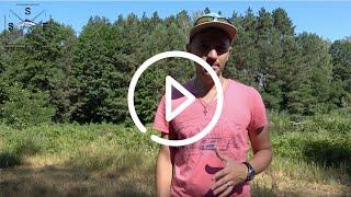 Preview видео обзора озера в Бузовой Классное место
