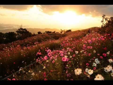 All Of Creation Sings By Karen Davis (w/ Lyrics)