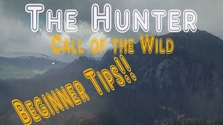 Hunter Call of the Wild Xbox One/PS4- Beginner Tips