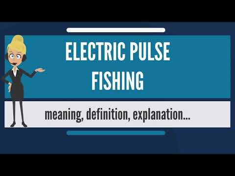 What Is ELECTRIC PULSE FISHING? What Does ELECTRIC PULSE FISHING Mean?