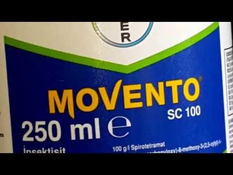 Bayer Movento unlu bit, kabuklu bit ve yaprak bitinde etkili ilaç sadece 90 TL tel:0544 516 02 78