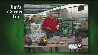 Jim's Garden Tip: Starting Seeds Indoors