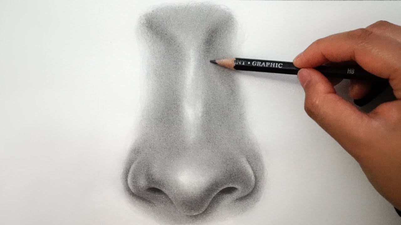 How to draw a nose easy