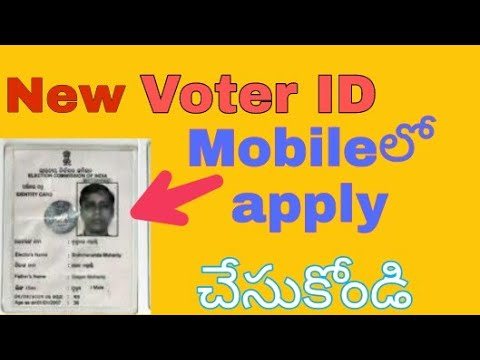 How to apply voter id card|apply voter id