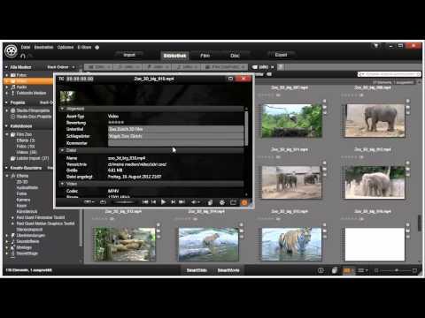 Clipdetails und Infos Pinnacle Studio 16 und 17 Video 23 von 114