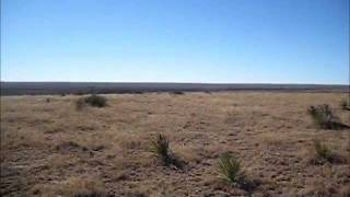 2010trip19 - Cimarron Grasslands