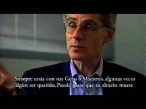 Reencarnacion Dr Brian Weiss Youtube