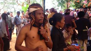 Traditional ceremony in Timor Leste (Liquica District) 2016