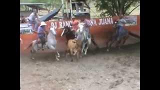 Video 18 RAFAEL CARRASCO EL BURRO DEL DDT download MP3, 3GP, MP4, WEBM, AVI, FLV Oktober 2018
