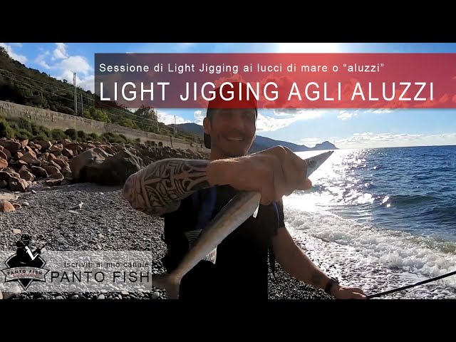 Light Jigging agli Aluzzi o Lucci di mare - Strike in diretta!