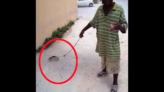 HILARIOUS CRACKHEADS WITH THEIR PETS (WEIRDEST VIDEO YOU WILL EVER SEE)
