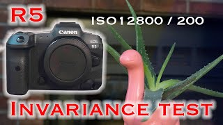 R5 ISO Invariance Test! Has Canon gotten any better in the last 10 years?