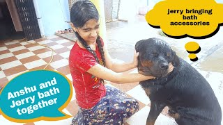 Anshu and Jerry taking a bath and having fun|well trained rottweiler|guard dog breed.