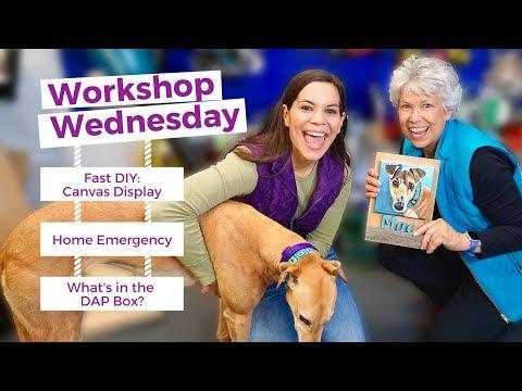 Fast DIY Canvas Display // Workshop Wednesday