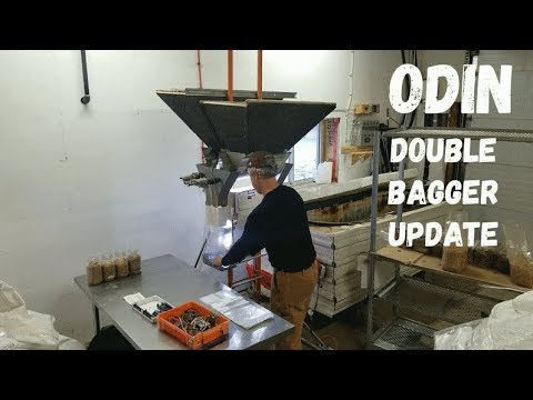 The Best Farming Equipment For Oyster Mushrooms! ODIN - Double Bagger Update