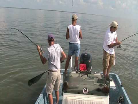 Redfish on every rod calcasieu lake pt 2 youtube for Calcasieu lake fishing report