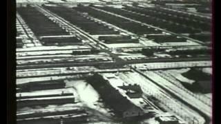 Les Complices d'Hitler - Himmler l'exécuteur