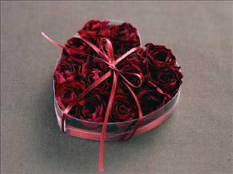 Nhac khong loi - When  you tell me that you love me.wmv