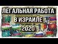 РАБОТА В ИЗРАИЛЕ 2020 // ВОЛОНТЁРСКАЯ ВИЗА // РАБОЧАЯ ВИЗА // POSAO U IZRAELU // work in israel