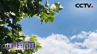 [中国新闻] 7月中下旬中国空气质量预报公布 | CCTV中文国际