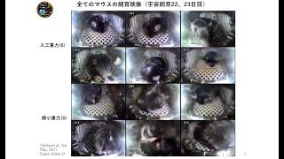 4)宇宙のマウス 高橋 智(筑波大学)