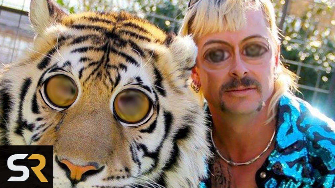 Netflix's Tiger King Pitch Meeting