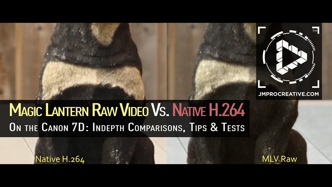 Magic Lantern Raw Video Comparison vs  Native H 264 on Canon 7D: Indepth  Samples, Tips & Tricks