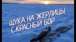Зимняя РЫБАЛКА на заливах КАМЫ Поставил жерлицы на ЩУКУ