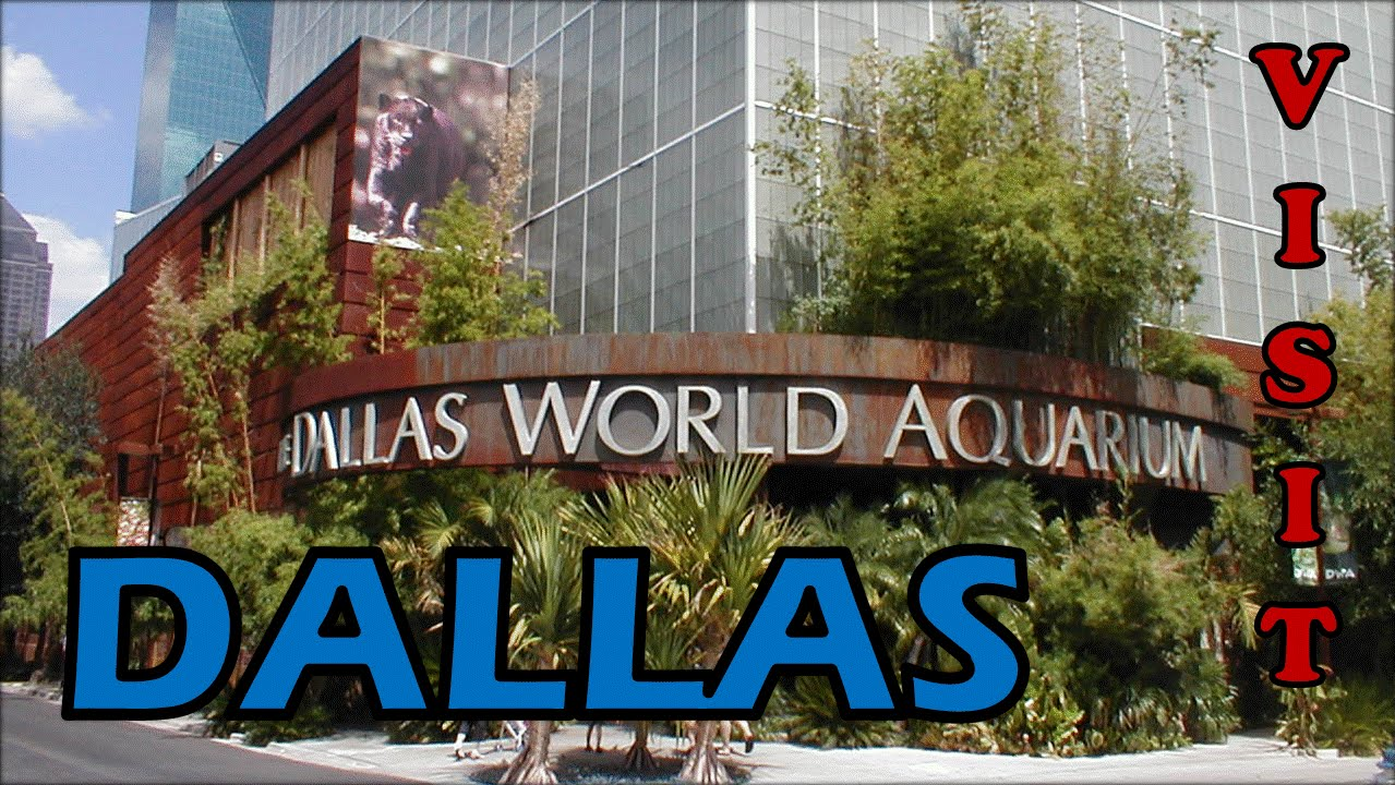 Visit Dallas Texas USA Things To Do In Dallas The City Of - 10 things to see and do in dallas