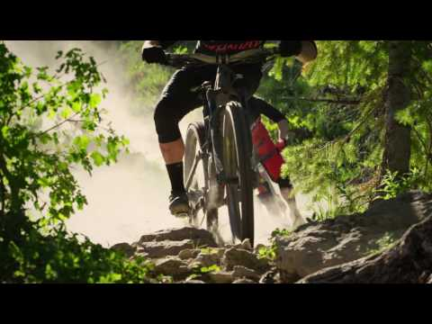 Specialized Enduro Coil 29er 2018 Mountain Bike Tarmac Black/Gold