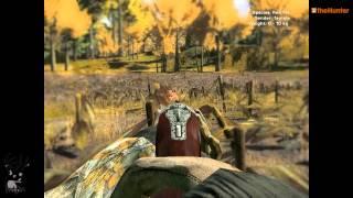 theHunter-Red fox Hunting