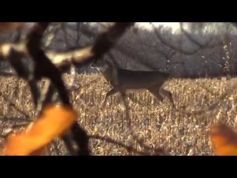 FULL EPISODE Sportsman Channel With Hardcore Pursuit Featuring NE Iowa Outfitters 2015