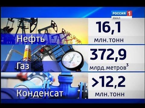 Более 16 млн тонн нефти добыли на Ямале за неполный год