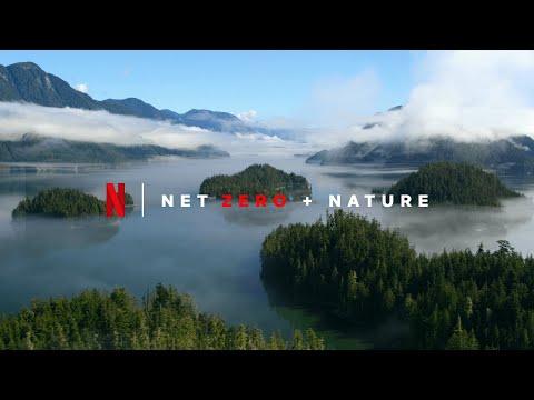 Netflix + Sustentabilidad - Cero Emisiones para finales de 2022