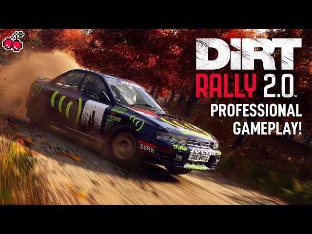 17 MINUTES of DiRT RALLY 2.0 Gameplay (Pro Rally Driver)