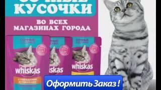 Полноценный корм для котят Whiskas