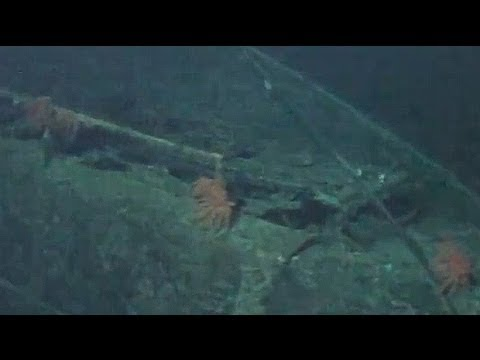 World War Two Japanese submarine discovered off the coast of Hawaii
