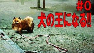 弱肉強食の世界で犬の王になる!! #0 - Tokyo Jungle 実況プレイ