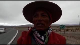 Video: Inés Lamas asambleísta contra la explotación del litio