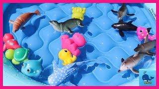 Учим морских животных 🐳 на русском и английском языках! Обучающие видео для детей