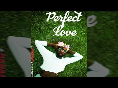 HANANI - Perfect Love (Offical Audio)