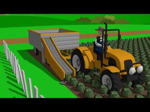 Tractor without a cab and a Farmer wearing a hat - Farm Works | tale about tractors - Bajki Traktory