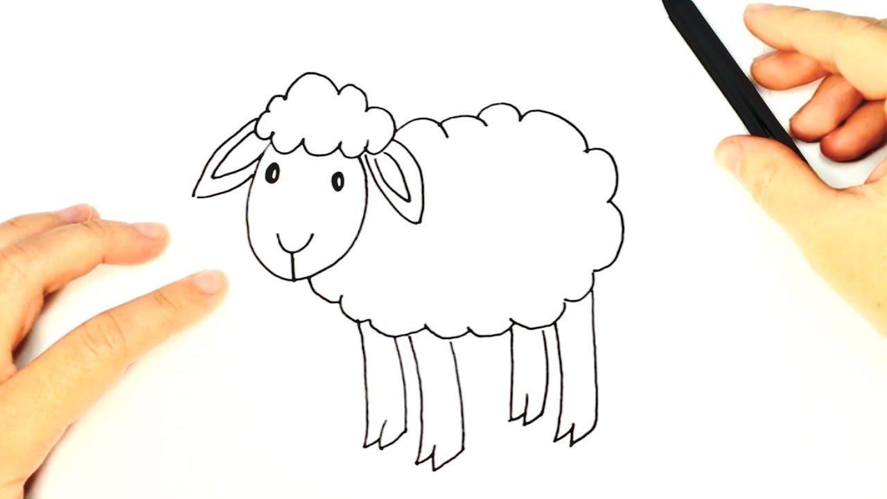C mo dibujar una oveja para ni os dibujo f cil de una - Como hacer una oveja ...