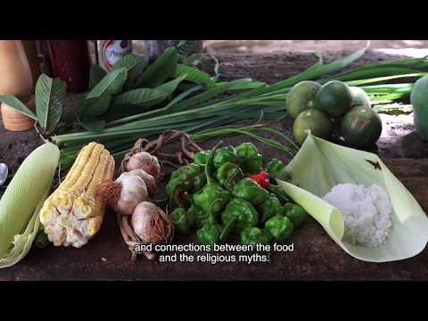 Malas Hierbas Cuba Trailer Oficial