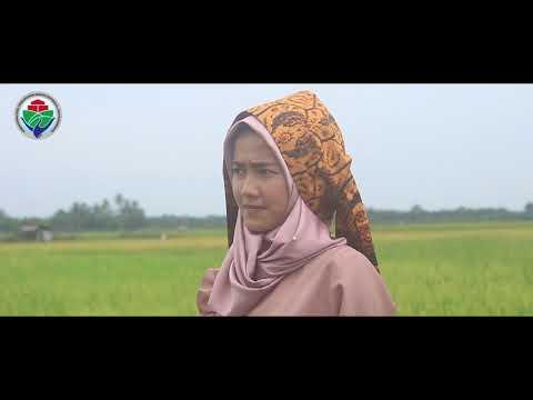 PID Kecamatan Ranah Ampek Hulu Tapan