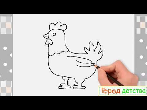 Как нарисовать курицу поэтапно карандашом