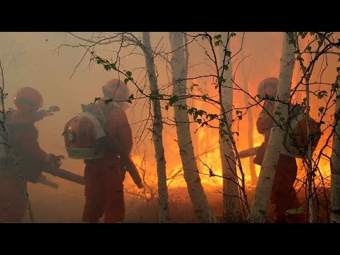 Over 1,600 people battling forest fire in Inner Mongolia