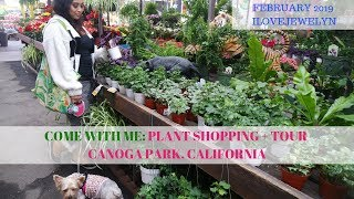 Come with me: Plant shopping + tour  | Canoga Park, CA | Feb 2019 | ILOVEJEWELYN