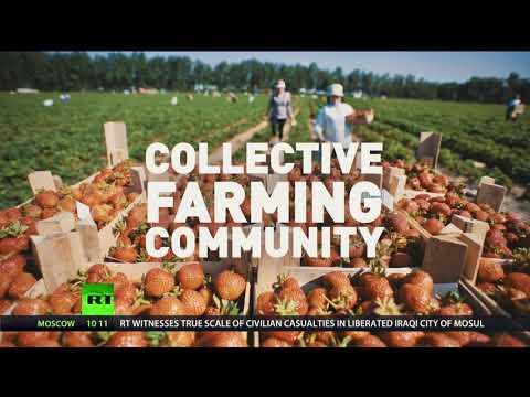 Socialist dreams made reality? Communists name farm mogul as 2018 presidential pick
